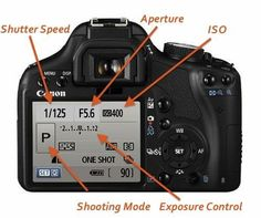 Learn How To Use Your DSLR Camera With This Easy Photography Tutorial! #DslrCameras