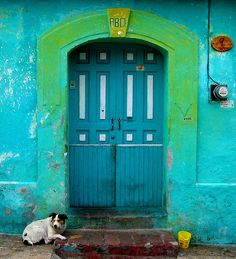 Dog at entrance of a blue door in San Cristobal, Chiapas, Mexico. Photo by Tilo Driessen.