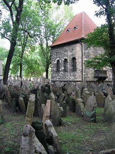 Old Jewish Cemetary in Prague, 40,000 graves), just piled one on top of the other, often nine deep; so ancient that, for illiterate relatives, pictures were carved into grave stones to depict occupations.  In a synagoge next door, a museum of Jewish Children's art -- pre- and post-Holocaust was stunning, tearjerking, heart-wrenching.