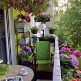 Súťaž o najkrajší balkón 7