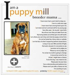Say a big fat NO to PUPPY MILLS!   #pets #care #puppy #dogs #puppymills #freedom #educate