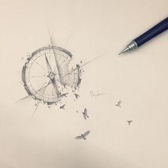 compass bird - Google Search