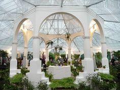 Orchid House in Rio de Janeiro Botanical Garden (Jardim Botânico do Rio de Janeiro), Brazil