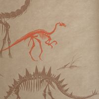 Dino wallpaper - Obie would LOVE this!