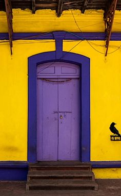 Colors. Goa, India Photo by Marji Lang Photography on Flickr