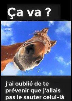 "Photo equitation avec ""citation"" type fb"