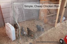 Five Little Homesteaders: A Cheap and Easy Run for Chickens