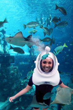 5 Fantastic Underwater Adventures to Explore Middle East Destinations, Creative Inventions, Palms Hotel, 100 Things To Do, Save Our Oceans, World Religions, Colorful Fish, Ghost Towns, Vacation Trips