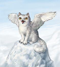 Catowl! http://ptich-ya.deviantart.com/art/Catowl-410393781