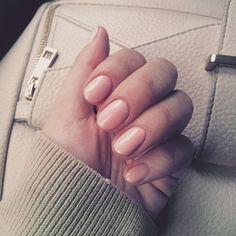 Shellacked :nail_care::sparkling_heart: _______________________________________ #shellac #notd #gelpolish #shellacmanicure #babypink #pinknails #gelnailsdoneright #nailstagram #nailpolishobsessed #manioftheday #nailsofinstagram