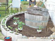 I loved this idea of planting a garden...using cement blocks for strawberry plants....great idea!!! That way they don't take over the other plants...I am having trouble with mine that have taken over my   flower bed. :((