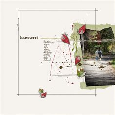 hartwood by Phylis