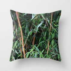 Buy bamboo painted Throw Pillow by Christine baessler. Worldwide shipping available at Society6.com. Just one of millions of high quality products available.