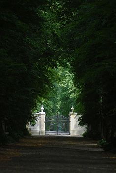 Enchanted road to estate gates Landscape Design, Garden Design, Driveway Entrance, Parks, Ivy House, Entrance Gates, Front Gates, My Secret Garden, English Countryside