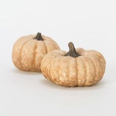 Holiday decor, concrete pumpkin