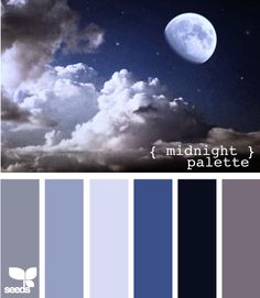 midnight palette - Ignore all the other palettes I've pinned for my bedroom. This is what I want. Walls in the lightest blue, bedspread in the second lightest and the darkest, and use all the colors in the curtains, rugs, and other accents.