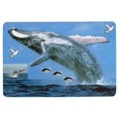 Floor Mat Whale - ocean side nature waves freedom design