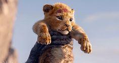 """10 Datos sobre """"El rey león"""" que vale la pena conocer antes de su estreno Lion King 3, Lion King Movie, Donald Glover, Haruki Murakami, Le Roi Lion Film, John Oliver, Telugu Movies, Cat Life, Live Action"""