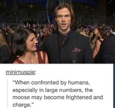 Sam not only takes the name of a moose, but also it's characteristics and habits