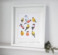 Tic Tac Toe! Finches Art Print by Headspace Illustrations  https://www.etsy.com/ca/listing/594999813/finches-bullfinch-golden-american