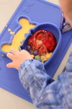 Grippo 2-in-1 Silicone Placemat and Plate in Blue Messy Play, Food Trays, How To Make Breakfast, Baby Led Weaning, Baby Safe, Group Meals, Happy Baby, Free Baby Stuff, Happy Family