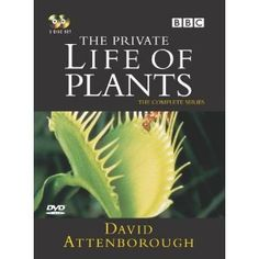David Attenborough The Private Life Of Plants Watch Online. David Attenborough's study of the world of plants, which demonstrates, with the aid of time-lapse photography, the rich and varied ways in which they flourish. Time Lapse Photography, Fiction Film, David Attenborough, The Secret World, Plants Online, Private Life, Documentary Film, Watches Online, Documentaries