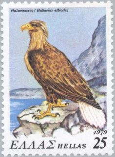 Stamps showing White-tailed Eagle Haliaeetus albicilla, with distribution map showing range White Tailed Eagle, Kite, Postage Stamps, Eagles, Birds, Gallery, Painting, Animals, Image
