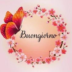 Italian Words, Italian Quotes, Morning Blessings, Good Morning Good Night, Butterfly Art, Girl Birthday, Spanish, Education, Iphone