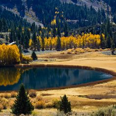 Autumn Lake - Tap to see more of the best 'Autumn is coming' wallpapers! | @mobile9