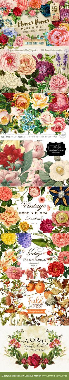 https://crmrkt.com/v97qo Amazing Collection of Hundreds of Flowers Cliparts!