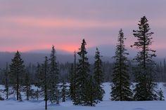 Polar Night Light by Juhani Syväoja (Finland)