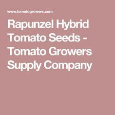 Rapunzel Hybrid Tomato Seeds - Tomato Growers Supply Company