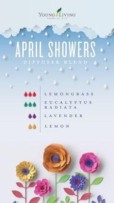April showers bring May flowers! Make it rain with this diffuser blend created with 3 drops of Lemongrass, 3 drops of Eucalyptus Radiata, 2 drops of Lavender, and 2 drops of Lemon essential oils. with Young Living Member ID 1812112 Essential Oils Guide, Doterra Essential Oils, Young Living Essential Oils, Lemongrass Essential Oil, Eucalyptus Essential Oil Uses, Yl Oils, Eucalyptus Radiata, Essential Oil Combinations, Diffuser Recipes