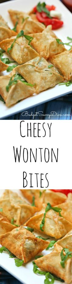 Cheesy Bites Recipe - My family loved these bites. You can make them pizza flavored. It really is the perfect appetizer recipe. Great snack or side dish recipe. I cannot wait to make them for my next party.