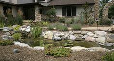 Backyard Pond with Four Season Garden #EcosystemPond #Landscape