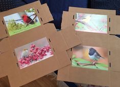 If you don't have time, materials, or expertise to Mod Podge or do other fancy decorating, just tape and/or glue calendar pictures to the boxes. I used these birds for the inside of the boxes, and they will be for some bird-themed boxes. Easy and fun! Shoebox Ideas, Calendar Pictures, Operation Christmas Child, Shoe Box, Charity, Tape, Boxes, Fancy, Decorating