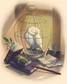 Harry Potter Chapter Illustrations Color Harry�i mean, uh,