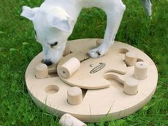 Nina Ottosson: Smart Dog Toys......Activities that are fun to watch, but also play together with your pet.