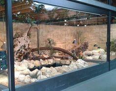 enclosure reticulated python