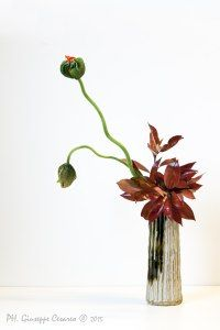 / Ikebana Flower Arrangement, Ikebana Arrangements, Beautiful Flower Arrangements, Most Beautiful Flowers, Flower Vases, Flower Art, Floral Arrangements, Vertical Garden Plants, Natural Bouquet