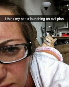 Hilarious Meme S That Show The Tricky Side Of Cats ; unglaublich witzig meme s, das die heikle seite der katzen zeigt Hilarious Meme S That Show The Tricky Side Of Cats ; Funny Animal Memes, Cute Funny Animals, Funny Cute, Really Funny, Hilarious Memes, Funny Cat Photos, Funny Animal Pictures, Funny Images, Baby Pictures