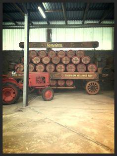 Something old Golden Oak, Something Old, Sausage, Beer, Photos, Food, Root Beer, Ale, Eten