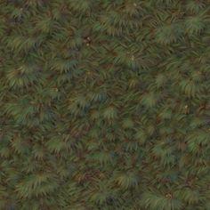 GN_GrassB.jpg (512×512)