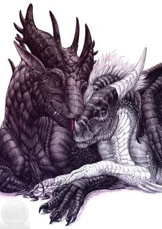 Mythical Creatures Art, Mythological Creatures, Magical Creatures, Fantasy Creatures, Dragon Images, Dragon Pictures, Art Vampire, Chihiro Y Haku, Big Dragon