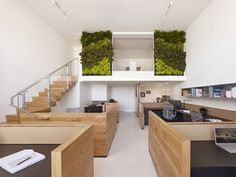 """Love the still burgeoning plant walls...this one acts like a painting and """"inside"""" garden"""