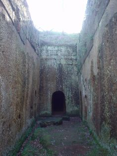 I turned and discovered my first tomb, gaping right before me. Yellow lichen covered the facade, glittering in the sun.  THE ETRUSCAN