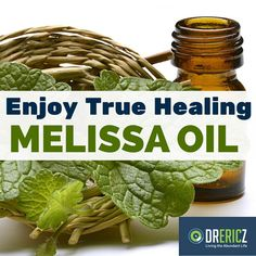 The benefits of melissa essential oil - also known as lemon balm - can benefit our lives in many ways, from daily comforts to long-term effects.