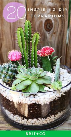 Get inspired to DIY your own terrarium with these creative beauties.