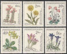 Czechoslovakia 1960 Flowers/Plants/Succulents/Cactus/Nature 6v set (n43148)