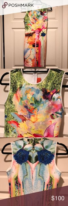 Clover canyon dress Watercolor clover canyon dress. Fitted and Midi length. Great condition worn once Clover Canyon Dresses Midi